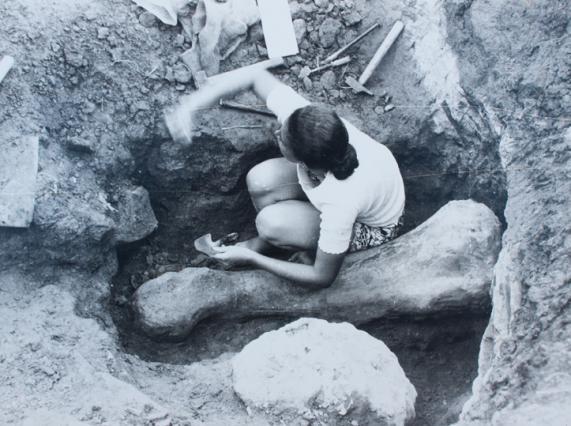 Les fouilles des années 197