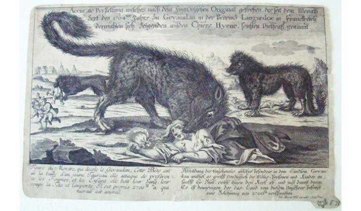 Une hyène, la Bête ?