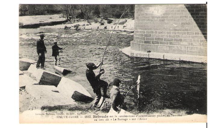 La pêche au saumon sur l'Allie