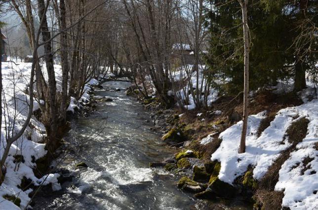 La Dranse d'Abondance en hiver