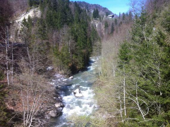 Gorges de l'Arly, confluence Arly et Flon