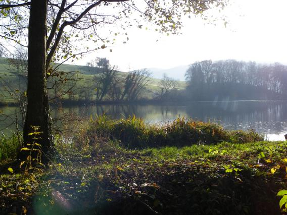 L'étang des Chartreux