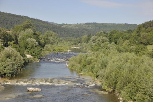 La Loire à Coubon