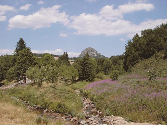 Les sources de la Loire au mont Gerbier de Jonc