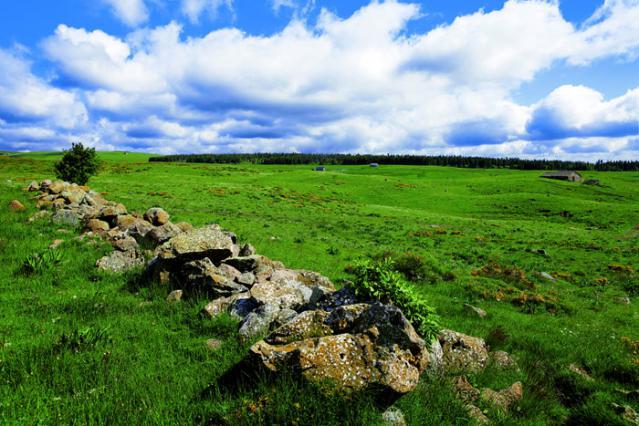 Burons des monts du Cantal