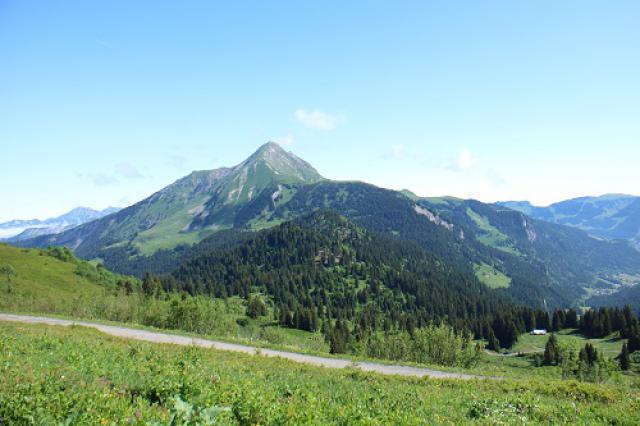 Mont de Grange