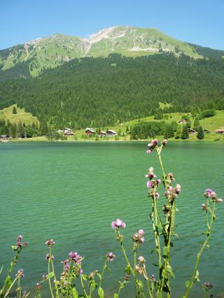 Lac des Plagnes