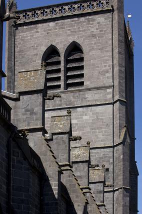 Contreforts et gargouilles de la Cathédrale