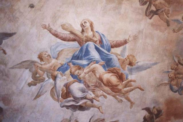 Palais de Justice - Ancien collège des Jésuites. Plafond peint de l'ancienne bibliothèque, L'Assomption de Giovani Gherardin
