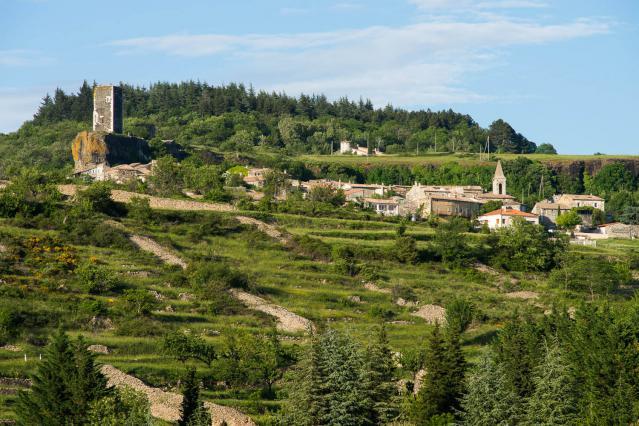 Terrasses et clapas abandonnés à proximité du vieux village de Mirabel