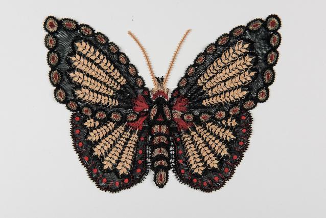 Papillon en dentelle