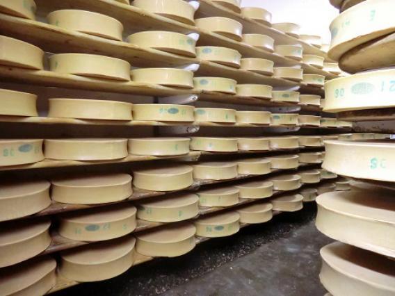 Coopérative laitière de Moûtiers, affinage des Beaufort