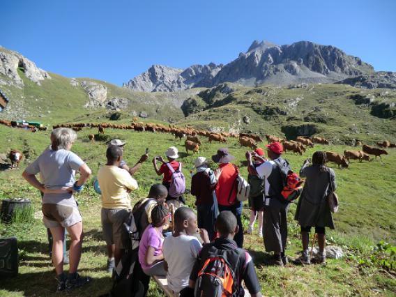 Visite alpage Courchevel, agriculteur Daniel Monbéliard