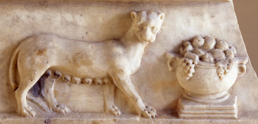 Sculpture en marbre d'une panthère, provenant du théâtre antique, Musée Saint-Pierre, Vienne, 1er siècle après J.-C.
